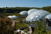 Eden Project Biomes and Landscapes — Stock Photo
