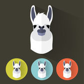 Animal Portrait with Flat Design - Llama — Stock Vector