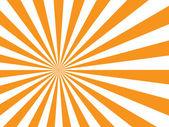 Sunburst on white background — Stock Vector