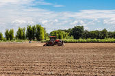 Tractor working in field agriculture. — Foto Stock