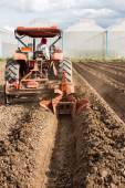 Tractor preparation soil working in field agriculture. — Stok fotoğraf