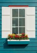 White window open and flower at house — Stockfoto