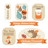 Set of vintage autumn fall labels, tags, stickers, vector — Stock Vector