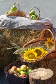Heads of grain, apples and sunflowers. Harvest on the haystack. Selective focus — Stock Photo