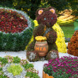 Flower beds in a shape of bear eating honey among different fruits with colorful chrysanthemums. Parkland in Kiev, Ukraine. — Zdjęcie stockowe #68476763