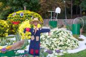 Vegetable garden, guarded by a scarecrow. Big figures made from flowers in the shape of vegetables with colorful chrysanthemums. Parkland in Kiev, Ukraine. — Stock Photo