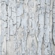 Old patterned wooden background in grey or light blue with flake — Stock Photo #52363601