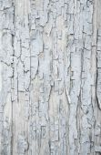 Old patterned wooden background in grey or light blue with flake — Stock Photo