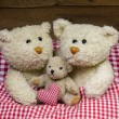 Teddy bear family with a baby lying in a red checkered bed. — Stok fotoğraf