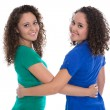 Portrait of an isolated couple of real twin sisters over white w — Stock Photo #56114661