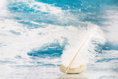 White feather on a blue turquoise background for literature conc — Stock Photo