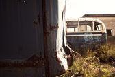 Abandoned buses — Stock Photo