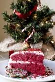 Christmas cake and decoration — Stock Photo