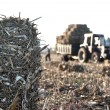 Tractor collecting haystack — Stock Photo #55688913