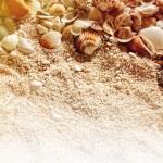 Sea shells on the sand. — Stock Photo #78677460