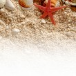Star fish and Sea shells on the sand. — Stock Photo #78677710