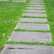 Concrete walking way in the park — Stock Photo #56775941