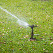 Automatic sprinkler watering in garden — Fotografia Stock  #64114485