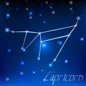 Christmas zodiac sign — Stock Vector