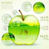 02 Apple infographic — Stock Vector