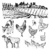 Farm hands drawing — Stock Vector