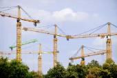 Grues de construction — Photo
