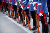 Bayonet rifle detail during military parade — Stock Photo