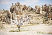 Дерево желания Каппадокии — Стоковое фото