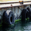 Постер, плакат: Tyre bumpers in a commercial dock