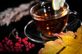 Tea in cup with lemon on black background — Stock Photo