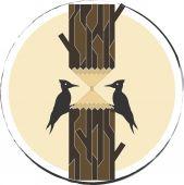 Woodpeckers — Stock Vector