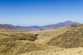 Puno grasslands from Infiernillo — Stock Photo