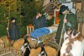 Österrike, jul — Stockfoto
