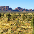 Australia, NT, Kata Tjuta — Stock Photo #61721113