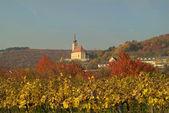 Austria, Burgenland — Stock Photo