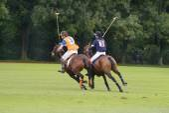 Polo Sport — Stok fotoğraf