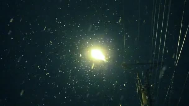 Lantern snowing night — Vídeo de stock