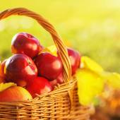 Basket of red apples with yellow leaves — Stock Photo