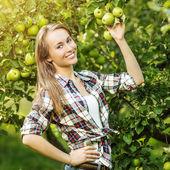 Woman in apple tree garden — Foto Stock