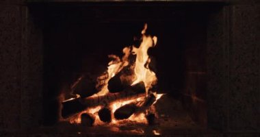 Cozy burning fire — Stock Video