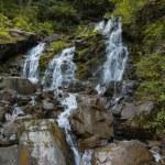 Waterfall — Stock Photo #52393043