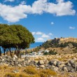 Town of Lindos and Acropolis on the island of Rhodes — Stock Photo #54168311