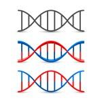 DNA symbol set art — Stock Vector #63709807