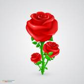Vector rose. — Stock Vector