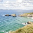 Seascape at The Carrick a rede in Northern Ireland — Stock Photo #58899009
