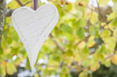 Kalp asılı — Stok fotoğraf