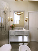 Bathroom vanities and sink consoles in classic style. — 图库照片