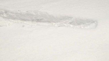 High snow — Stock Video