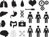 Human organs and medical tools — Stock Vector