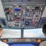Постер, плакат: Flight simulator